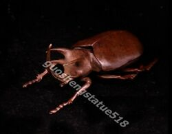 Chinese Red Copper Lifelike Animal Insect Dung Unicorn Beetle Beatles Small Box