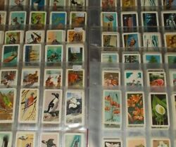 Canada Brooke Bond Cards Complete Full Sets In Plastic Sleeves - Select Set