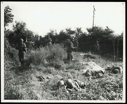 Wwii 1944 Normandy Carentan 101st Airborne Paratroopers Type 1 Original Photo