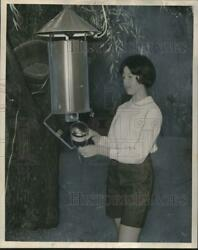 1964 Press Photo Donna Mechler Inspecting A Mosquito Trap In Her Home