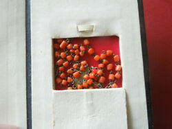 J2799 Antique Coral Rosary + Mop Cross In A Leather Bound 1912 Bible See