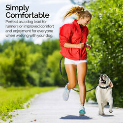 Retractable Hands Free Dog Leash With Dual Bungees For Up To 150lb Pp03 Pet Run