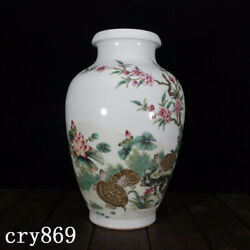 Old China Antique Qing Dynasty Qianlong Year System Pastel Turtle Painting Vase