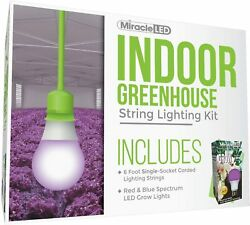 Miracle Led Single-socket 6ft Corded Indoor Greenhouse Red And Blue Spectrum