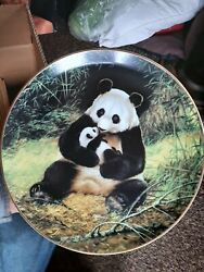 Panda Bear Collectable Plate From Brad Ex