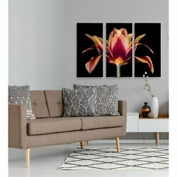 Red Tulip-a Premium Multi Piece Art Available In 3 Sizes Oversized