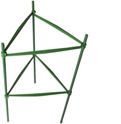 Tomato Plant Cage Garden Steel Stakes Trellis Climbing Plant Support 3 Pack 2 Ft