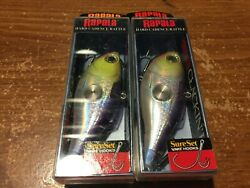 Discontinued Lot Of 2 Rapala Clackinand039 Rap Cnr-8 Lures Purpledescent Nips