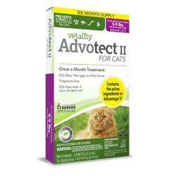 Vetality Advotect ll for medium cats and kittens 5 9 lbs. 6 month doses $21.95