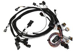 Holley 558-115 Hemi Main Harness Early W/throttle Position Sensor And Idle Air C
