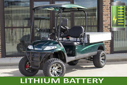 New Green Lithium Electric Lifted Utility Golf Cart 2 Passenger Powered Dumpbed