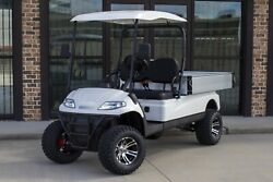 New White 48v Electric Lifted Utility Golf Cart 2 Passenger Powered Dumpbed