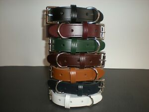 Real leather dog collars with heavy duty buckle 7 colours available 25mm  TR2