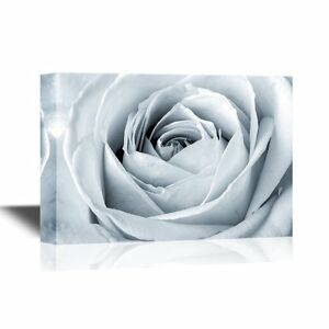 wall26 Floral Canvas Wall Art White Rose Close Up 16x24 inches $33.26