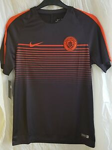 Nike Manchester City T-SHIRT Dry-fit size L