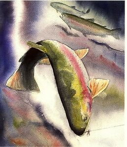 Rainbow Trout Gift picture 8X10 best Lake Cottage Fish Art Print by Barry Singer
