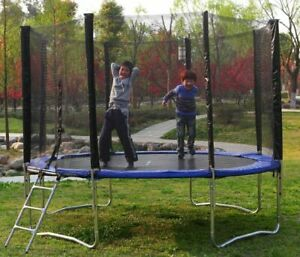 Blue 12 ft Round Trampoline With Safety Net Enclosure Ladder and Frame Safe B