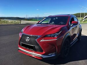 Hood Bonnet for Lexus NX  SCL Performance™