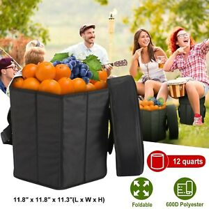 12 Qt Collapsible Soft Sided Insulated Cooler Bag Seat Outdoor Camping Traveling