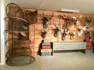 MUST SEE Group Collection Hand Crafted Replica's Taxidermy Decor Moose Man Cave