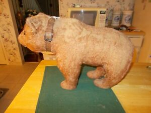 EARLY 1900S LARGE SIZED BEAR STANDING ON ALL FOUR LEGS ALL ORIGINAL WITH COLLAR