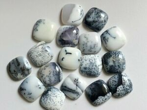 Amazing Lot Natural Dendrite 18X18 mm Square Cabochon Loose Gemstone