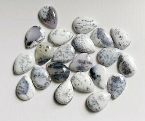 Rarest Lot Natural Dendrite 16X22 mm Pear Cabochon Loose Gemstone