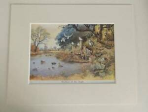 NORMAN THELWELL BROTHERS OF THE ANGLE FISHING VINTAGE PRINT IN NEW M GBP 6.50