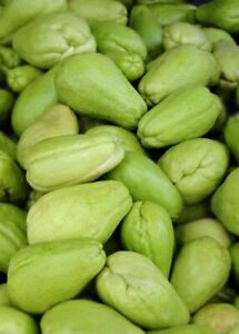 3 LBS Chayote Mirliton Mexican Chayote Smooth Skin Free Shipping