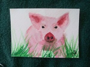 ACEO  Pig original watercolor painting Direct from Artist $5.00