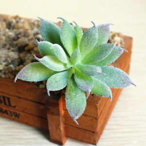 1Pcs Artificial Succulent Potted Plants Small Fake In Pots Indoor Outdoor Decor
