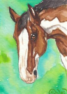 ACEO original Watercolor Art Card Horse Bay Frame Overo Stock type Mare gelding $10.00