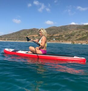 WHAT SUP  Stand Up Paddleboard  10' 0