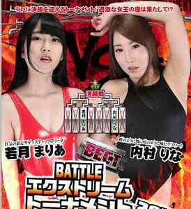 2017 FEMALE WRESTLING BLU-RAY 2 HOUR Women Ladies Grapple Japanese Swimsuit b217
