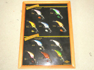 Chowhound & Chowpuppy Lures on Display Board