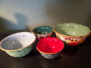 The Pioneer Woman Winter Bouquet NESTING MEASURING BOWL SET Stoneware NEW $17.95