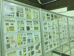 Complete full Exhibit 3 frames 48 pages International Awarded Rare items