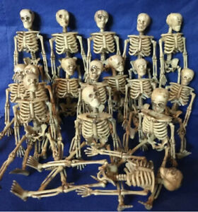 12 Skeleton Lot 6 Inch Miniature Plastic Small Halloween Dollhouse Fairy Garden