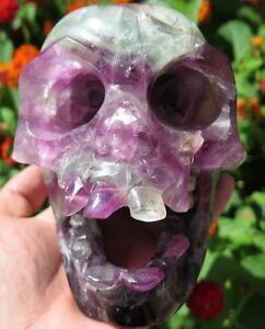 3LB 10.9OZ Fantastic Natural Fluorite Crystal Carving Art Skull