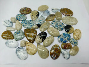 Wholesale Lot Natural Dendrite Opal Fossil Coral Agate Jasper Cabochon Gemstones