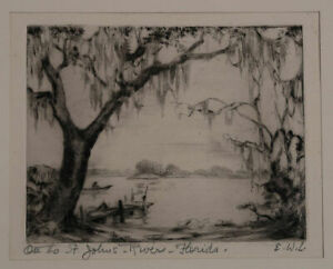 Pencil Signed Etching of Florida Swamp River No Reserve