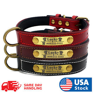 Custom Dog collar leather personalized Brass Name Plate small medium large dog