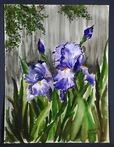 Vintage Iris Watercolor Painting Floral Signed $24.00