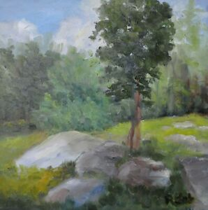 Woodland Star, forest scene, single tree between large rocks, Original Oil Ptg.