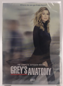 GREY#x27;S ANATOMY :The Complete Sea son 16 DVD 5 Disc New amp; Sealed * US Region 1