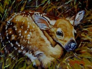 Original oil painting direct from artist Hiding Place young fawn wildlife art $225.00