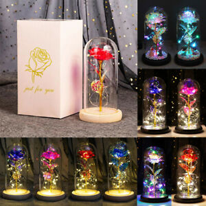 Beauty and the Beast LED Galaxy Light Rose in Glass Dome Lover Mothers Day Gift
