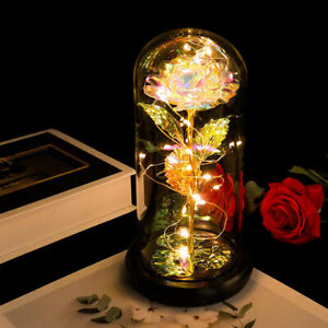LED Enchanted Galaxy Rose Eternal 24K Gold Foil Flower With Fairy String Lights