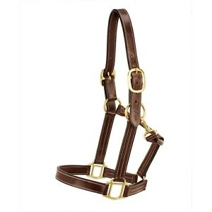 Silverleaf Plain Leather Halter with Brass Fittings with Double Buckle Crown