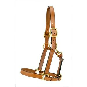 Silverleaf Padded Leather Halter with Brass Fittings with Double Buckle Crown